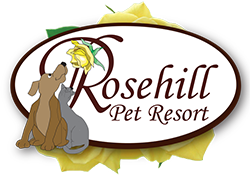 Rosehill Pet Resort